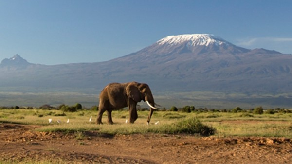 Kilimanjaro: Stepping up to a new LawNet Challenge
