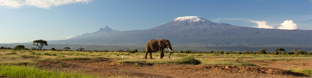 Kilimanjaro Blog 1: Getting Started